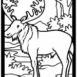 Moose 01 Coloring Page