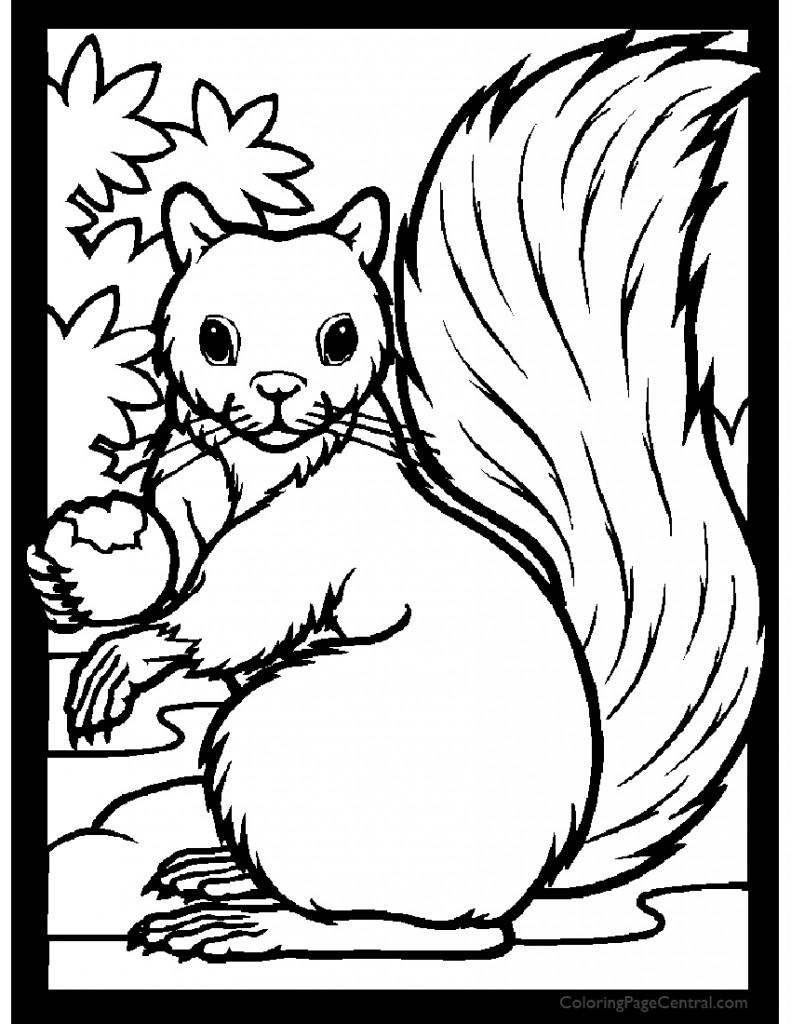 Squirrel 01 Coloring Page