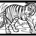 Tiger 01 Coloring Page