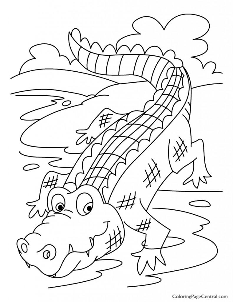 Crocodile 01 Coloring Page