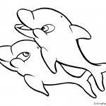 Dolphin 01 Coloring Page