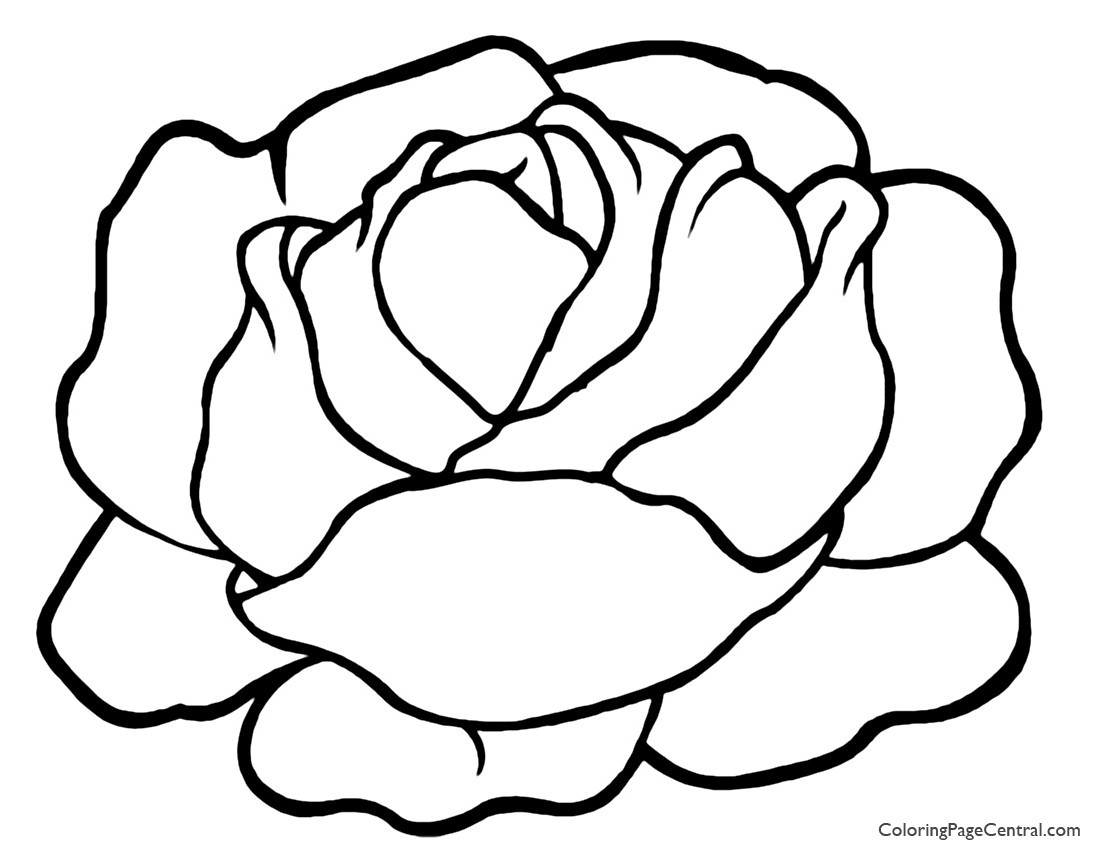 Lettuce 01 Coloring Page Coloring Page Central Picture Coloring Pages