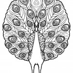 Peacock 02 Coloring Page