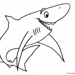 Shark 01 Coloring Page