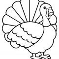 Turkey 01 Coloring Page